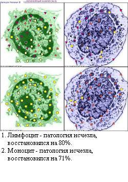 http://vd-ragel.ru/sites/default/files/u4/Капишон%20Н.%2010.jpg