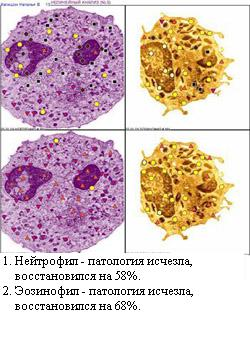 http://vd-ragel.ru/sites/default/files/u4/Капишон%20Н.%2011.jpg